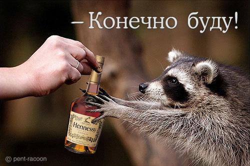 http://static.diary.ru/userdir/0/6/7/0/0670/28786000.jpg