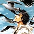 seagull26
