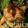 Shatajka