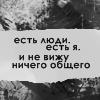 Кот Кайтлин