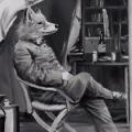 Aya Fox