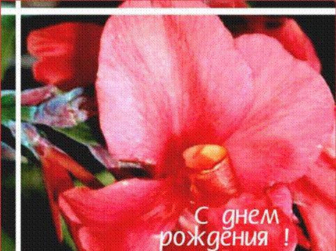 http://static.diary.ru/userdir/1/1/0/7/1107487/39746632.jpg
