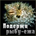 Лучафэрул