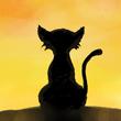 Кошка на крыше.