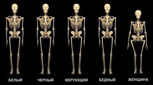 http://static.diary.ru/userdir/1/1/6/5/1165806/82620012.jpg
