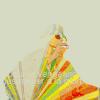gerrhonotus