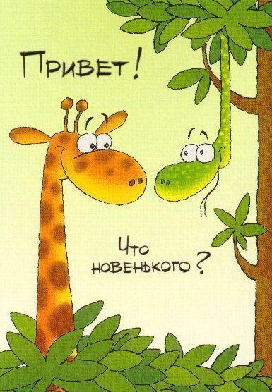 http://static.diary.ru/userdir/1/1/8/0/1180012/63536496.jpg