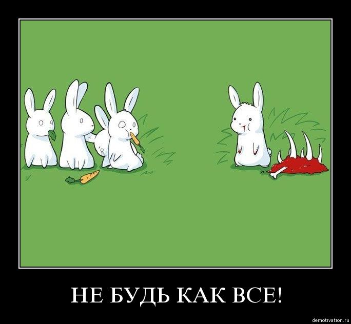 Картинки по запросу смешные картинки про зайцев