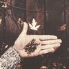 .last autumn