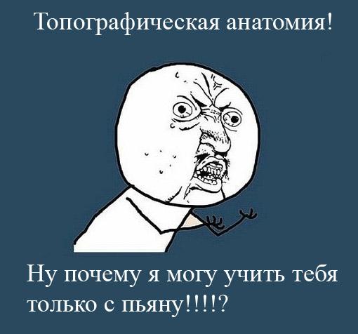 http://static.diary.ru/userdir/1/2/8/3/1283709/73053028.jpg