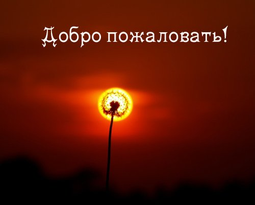 http://static.diary.ru/userdir/1/3/0/4/13049/46866340.jpg