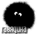 gavyadina