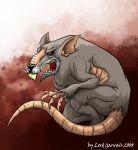 крыса-клархен