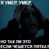 Lavichka