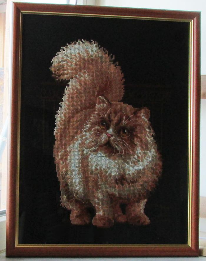 Название: Персидский кот;