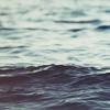 море и джонни