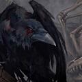 Raven Gray RL