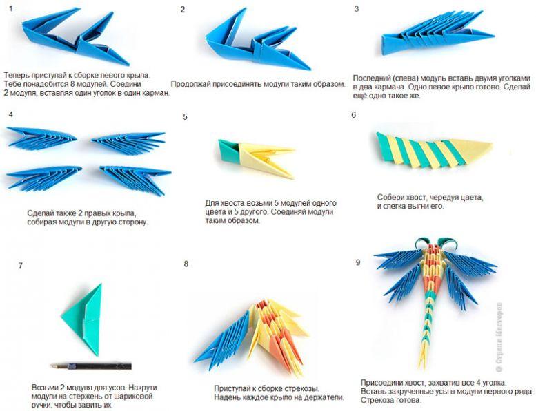 Модульное оригами бабочка схема сборки для начинающих