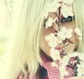 Lillit Vanilla