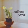 Ventria_Imp