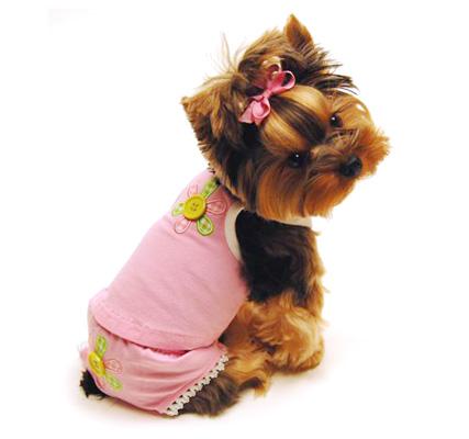 Выкройка футболки для собак Выкройка майки для собак.  Home.