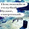Irisshka