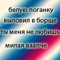 *ЛисАнька*