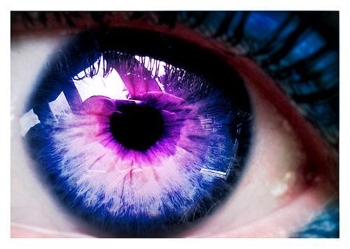 Violet eyes human