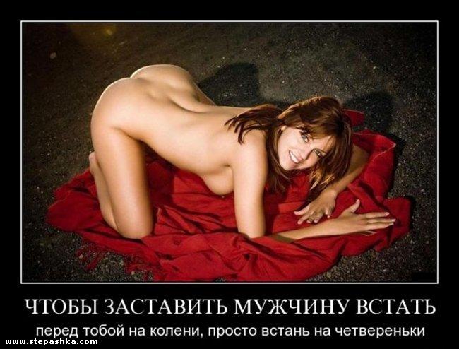 bolshoy-huy-ebet-krasavits