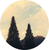 AmatiKira [DELETED user]