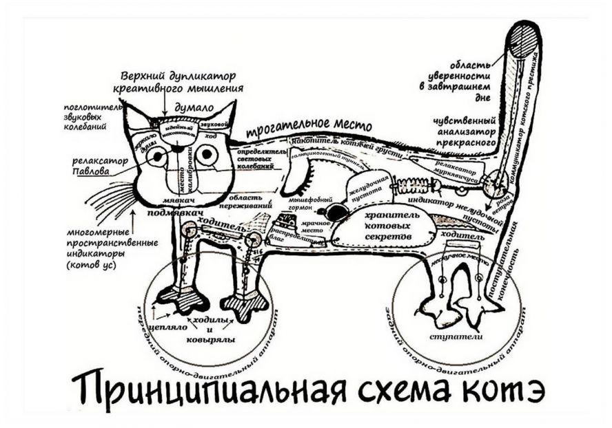 http://static.diary.ru/userdir/1/6/5/1/1651744/73142119.jpg