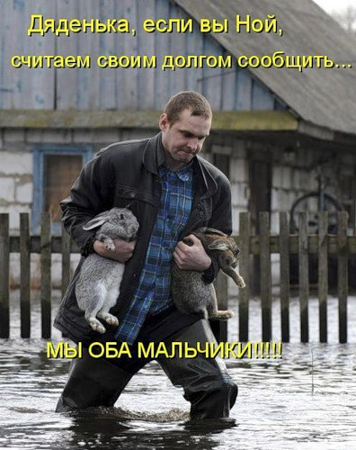 http://static.diary.ru/userdir/1/6/5/5/16555/53710742.jpg