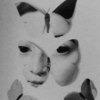 Albertia Inodorum