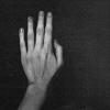 рукиноги