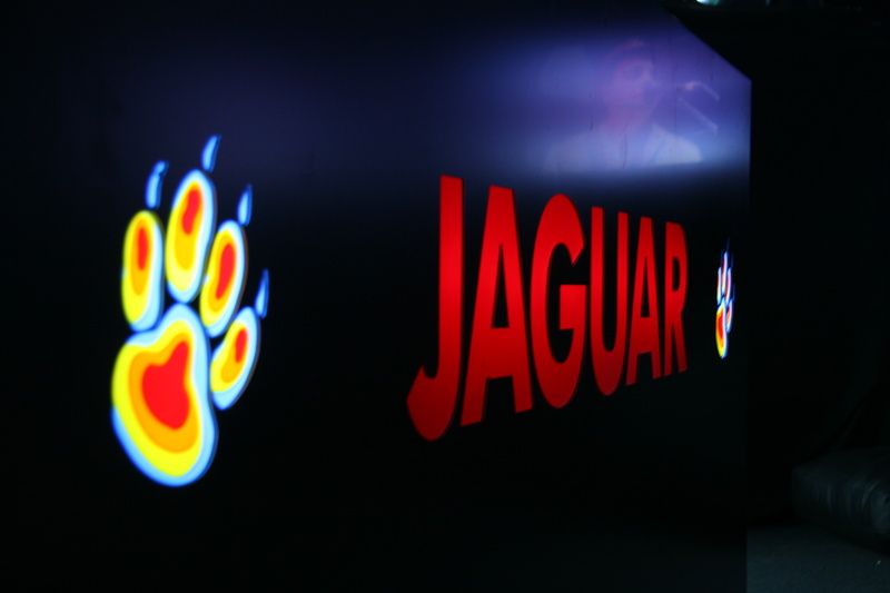 Фотографии с фестиваля нашествие 2010 совместно с напитком JAGUAR.