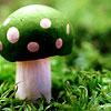 hughgreen