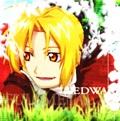 <Edward Elric>