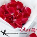 Red_lily
