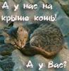 Хильдико_Вильнюс