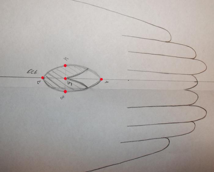 Рассмотрим, как построить выкройку для пошива боди.