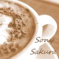 Sony Sakura