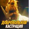 тау большого пса