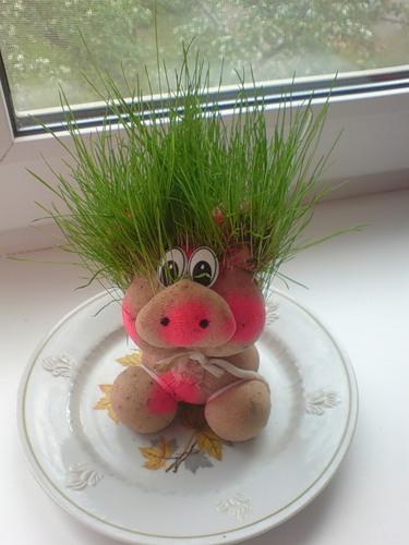 Как сделать травянчика поэтапно