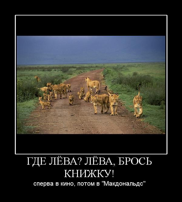 http://static.diary.ru/userdir/1/7/7/1/177110/44955652.jpg