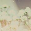 плюшевый ботаник :3