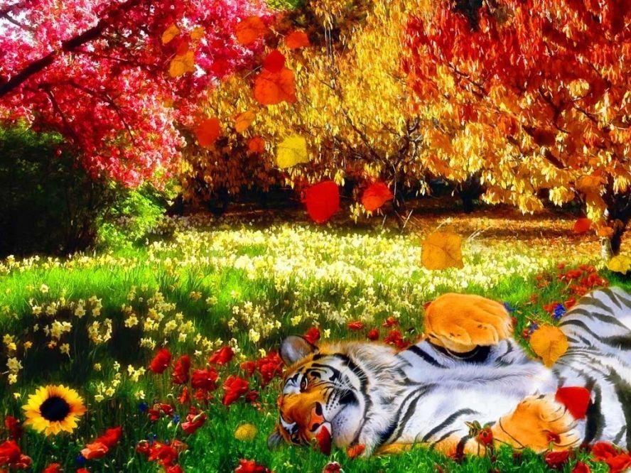 Картинки про природу цветы животные 7