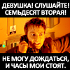 Львенок Сен-Клер Элессар