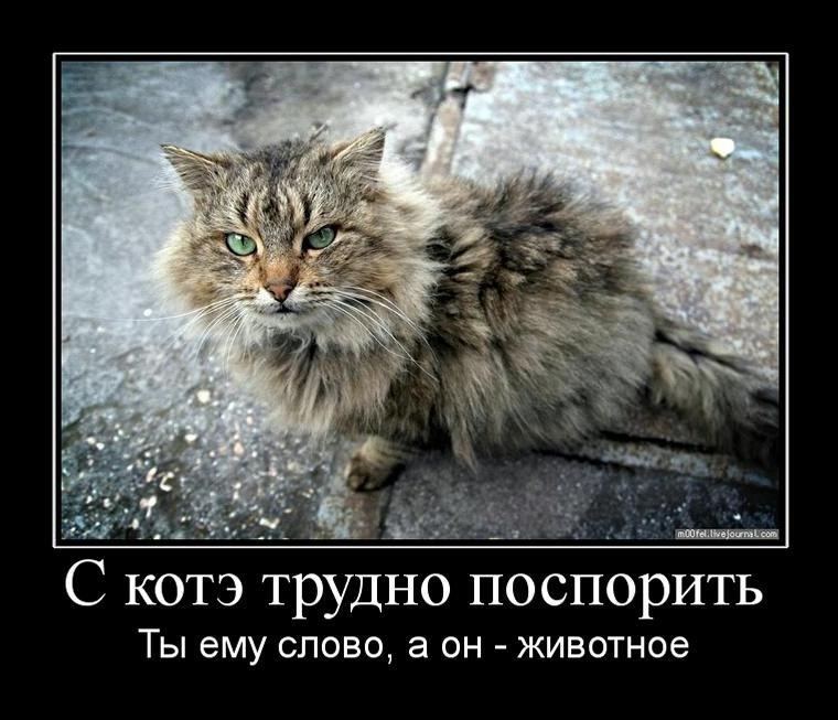 http://static.diary.ru/userdir/1/8/3/0/1830949/57573594.jpg