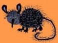 мышь-медуница