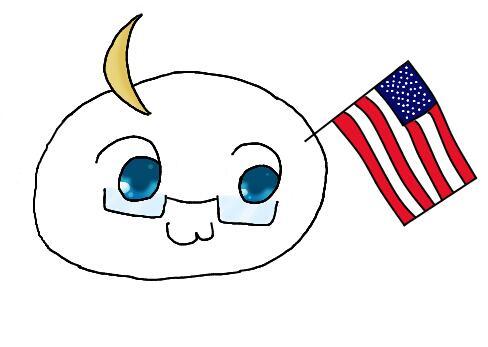 первый флаг сша